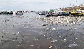 Brasil: La contaminación invisible en las aguas amazónicas amenaza a las poblaciones y a la biodiversidad