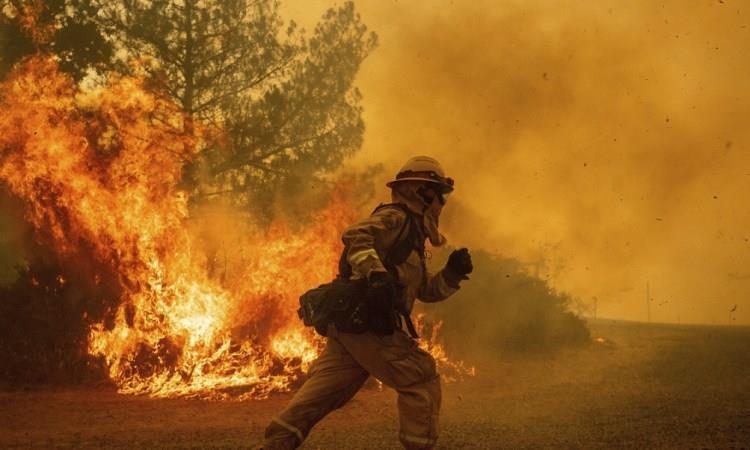 Deforestación, incendios forestales y contaminación por residuos son los principales temas ambientales que preocupan a los argentinos, según investigación