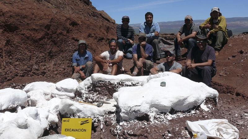 Neuquén: Encuentran restos de lo que podría ser el dinosaurio más grande de la historia