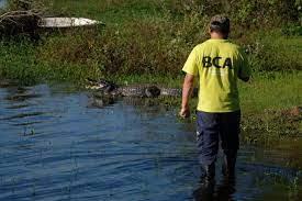 Ambiente fiscalizó criaderos de fauna silvestre en la provincia de Corrientes