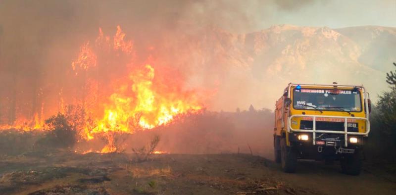 Manejo de bosques: ¿política de Estado o más incendios?